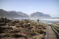 Колония пингвина на заливе Южной Африке Бетти Стоковые Фотографии RF