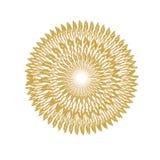 Колоски пшеницы Стоковая Фотография