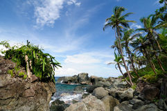 Колумбийское карибское побережье около границы Панамы Стоковая Фотография RF