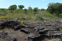 Колумбия стоковое изображение