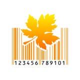 Код штриховой маркировки также вектор иллюстрации притяжки corel Стоковое Фото