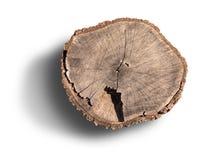 Кольца дерева на изолированном пне Стоковое фото RF