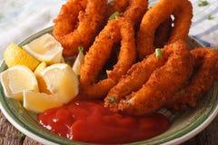 Кольца кальмара зажарили в конце-вверх крошек на плите с ketchu Стоковое Изображение RF