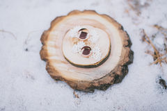 Кольца на держателе кольца Стоковая Фотография RF