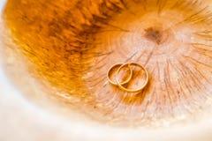 Кольца на пне Стоковое Фото
