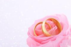 2 кольца с подняли Стоковая Фотография RF