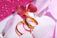 2 кольца с orchis Стоковое Фото