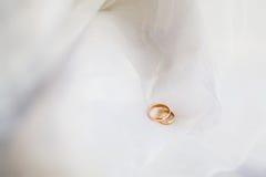 кольца wedding белизна Стоковое фото RF