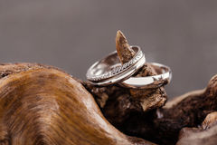 кольца wedding древесина Стоковые Изображения