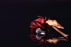Кольцо и роза Стоковое фото RF