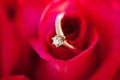 Кольцо с бриллиантом свадьбы в Розе, вы поженитесь я? Стоковое фото RF