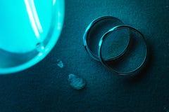 кольцо Стоковое Изображение RF