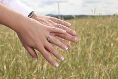 Кольцо 2 Стоковые Фото