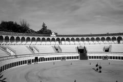 Кольцо Antequera Bull Стоковая Фотография RF