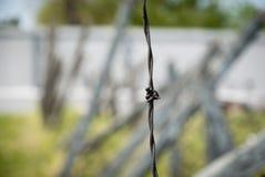 Колючая проволока в лагере concentation, Nis, Сербии стоковое фото