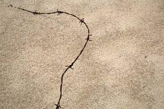 Колючая проволока на песке Стоковые Фото
