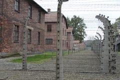 Колючая проволока на поляках стоковая фотография