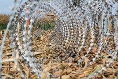 Колючая проволока устанавливая на границу Венгерск-Хорвата Стоковые Изображения RF