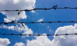 Колючий на небе Стоковые Фотографии RF