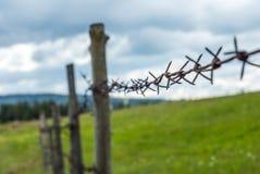 колючий провод загородки Обнести поле Трава луга с цветками Стоковые Фотографии RF