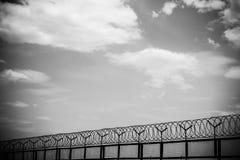 колючий провод загородки Стоковое Изображение