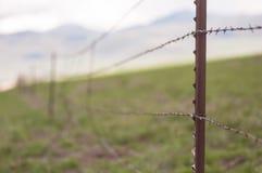 колючий провод загородки Стоковая Фотография RF