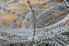 колючий провод загородки Стоковая Фотография