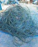 Краб задвижки рыболова голубой сетчатый Стоковые Изображения