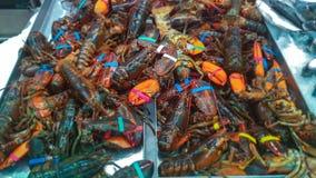 Краб морепродуктов Стоковое Изображение