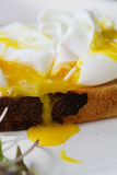 Крайность близкая вверх краденного яичного желтка капая вниз с здравицы стоковое фото rf