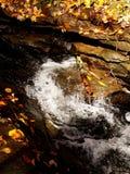 Край вод стоковое изображение rf