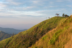 Край горы с небом Стоковые Фото
