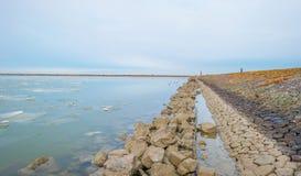 Край замороженного озера вдоль dike в зиме стоковое изображение rf