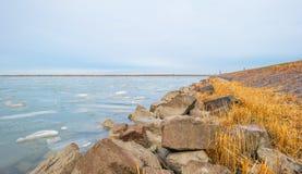 Край замороженного озера вдоль dike в зиме стоковое фото rf