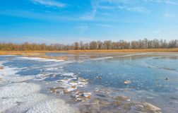 Край замороженного пруда в солнечном свете в зиме стоковые фотографии rf