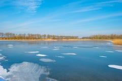 Край замороженного пруда в солнечном свете в зиме стоковые фото