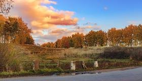 Край красочного леса в осени стоковая фотография rf
