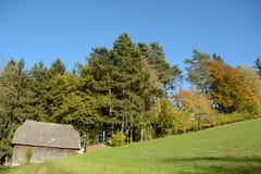 Край леса осени с деревянной хатой стоковое фото rf