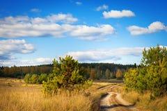 Край леса, поля осени и грязной улицы стоковые фотографии rf