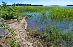 Край озера стоковые фотографии rf