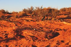Край скалы загиба подковы Колорадо, страница, Аризона стоковая фотография rf