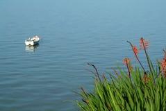 край цветет река стоковые изображения