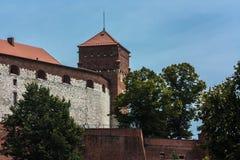 Краков, замок Wawel Стоковое фото RF
