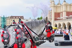 КРАКОВ, ПОЛЬША - ИЮНЬ 2017: Традиционный экипаж лошади на основной старой рыночной площади городка стоковое изображение rf