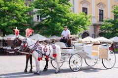 КРАКОВ, ПОЛЬША - ИЮНЬ 2017: Экипажи на главной площади в Краков в летнем дне, Польша лошади стоковые изображения rf