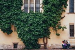 КРАКОВ, ПОЛЬША - 27-ОЕ ИЮНЯ 2015: Лиана в дворе аркады королевского замка Wawel стоковая фотография