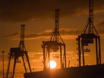 3 крана контейнера silhouetted против восходящего солнца Стоковая Фотография RF