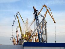 Краны башни в порте Стоковые Фото