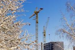 Краны башни на предпосылке конструкции, неба, деревьев покрыли s Стоковые Изображения