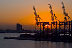 Краны в гавани на заходе солнца, Дурбане Южной Африке стоковая фотография